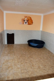 Hundepension schwerin