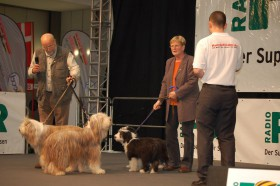 "Familie Börner und die Bearded Collies ""Well-guard's Delight"" auf der Showbühne (Foto: Snautz.de)"